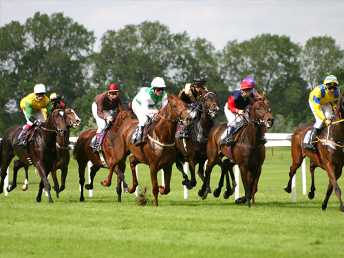 national horse race